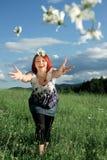 Werfende Gänseblümchen Stockfoto