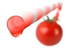 Werkelijk Natuurlijke Verse Tomaat Stock Foto's