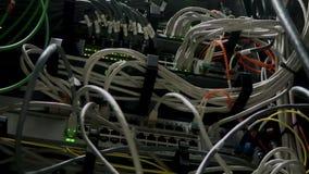 Werkende Ethernet-schakelaar in een donkere ruimte van het gegevenscentrum Velen opvlammende groene lamp stock footage