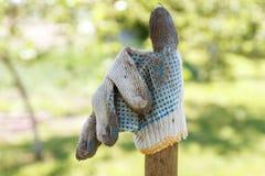 Werkende handschoen op de achtergrond van de tuin Stock Afbeeldingen