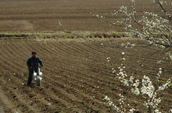Werkende landbouwer op het gebied stock afbeeldingen