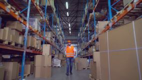 Werknemer die in pakhuis werken royalty-vrije stock foto