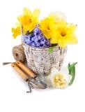 Werkzeug für Blumenzucht und Blume im Weidenkorb Lizenzfreie Stockbilder