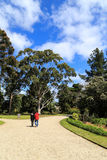 Werribee park in melbourne,australia Royalty Free Stock Photo