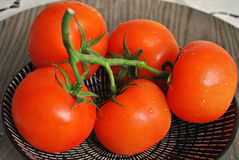 Werset tomaten op een bord Obraz Royalty Free