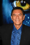 Wes Studi. At the Los Angeles Premiere of 'Avatar,' Chinese Theater, Hollywood, CA. 12-16-09 royalty free stock photos