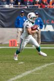 Wes Walker Miami Dolphins stock afbeelding
