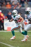 Wes Walker Miami Dolphins royalty-vrije stock afbeelding
