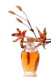 Wesentliche Schmieröle und Orchidee Stockbild