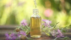 Wesentliches von Blumen auf Tabelle in der sch?nen Glasflasche stock footage