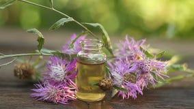 Wesentliches von Blumen auf Tabelle in der sch?nen Glasflasche stock video