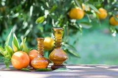 Wesentliches Zitrusöl und Frucht Stockfoto