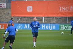 Wesley Sneijder Stock Photo