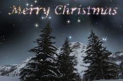 Wesoło boże narodzenia w gwiaździstym niebie Fotografia Stock