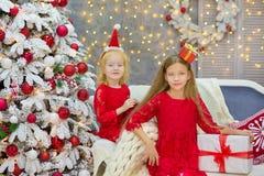 Wesoło bożych narodzeń i Szczęśliwych wakacji małego dziecka Śliczne dziewczyny dekoruje białej zielonej choinki indoors z mnóstw Obrazy Royalty Free