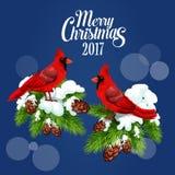 Wesoło bożych narodzeń powitania plakat, czerwony ptasi kardynał royalty ilustracja