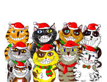 Wesoło bożych narodzeń Santa kotów powitania Zdjęcia Royalty Free