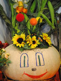 Wesoło słoneczniki i bania Obrazy Stock