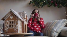 wesoło szczęśliwi Boże Narodzenie wakacje Młoda kobieta pije ciepłej herbaty z Bożenarodzeniowymi ciastkami zbiory wideo