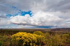 West American Highway, vast fields, rain in the distance stock photo