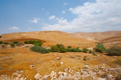 West Bank Royalty Free Stock Images