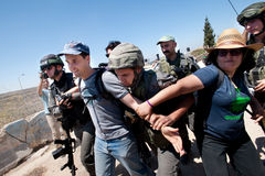 West Bank Protest. AL-WALAJA, OCCUPIED PALESTINIAN TERRITORIES - AUGUST 27: Border Police arrest an Israeli activist protesting the encirclement of the West Bank stock photography