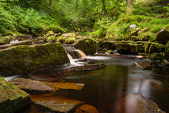 West Beck at Mallyan Spout. Mallyan Spout waterfall at Goathland in the North York Moors National Park flows into West Beck which has created a deep gorge Royalty Free Stock Images