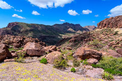 West Boulder Trail is located in the remote area of the Superstition Mountain Wilderness. Stock Images