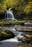 West Burton Approach. Cauldron Falls in all its majestic autumnal glory Royalty Free Stock Photos