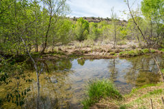 West Clear creek Arizona. The amazing hidden gem of west clear creek in Arizona Stock Images