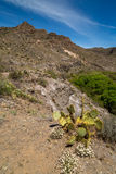 West Clear creek Arizona. Royalty Free Stock Images