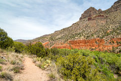 West Clear creek Arizona in spring. The amazing hidden gem of west clear creek in Arizona Royalty Free Stock Image