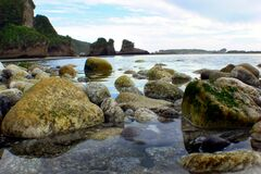 West Coast beaches of New Zealand (1) royalty free stock image