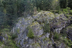 West Coast Cliff. A cliff off the coast of western Canada, just outside of Vancouver, British Columbia Stock Image