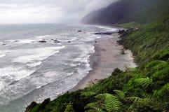 West Coast New Zealand Stock Images