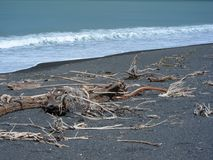 West Coast NZ Stock Photography