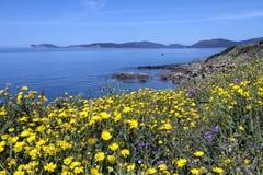 West Coast of Sardinia - Italy stock photo