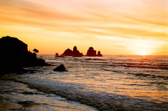 West Coast Sunset, New Zealand stock photo