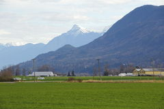 West Coast Valley in Winter Stock Photography