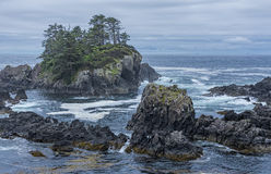 West coast Vancouver Island near Ucluelet British Columbia Canada Royalty Free Stock Photos