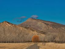 West-Colorado im Vorfrühling Lizenzfreie Stockfotografie