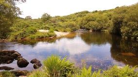 West Dart River . Dartmoor National Park . DEVON UK. Dartmoor NationalPark , West Dart River one of the smallest rivers on Dartmoor devon stock images