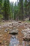 West Fork of Oak Creek Stock Photo