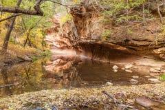 West Fork Oak Creek in Fall Stock Photography