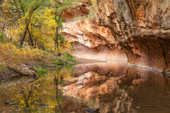West Fork Oak Creek Reflection in Fall Stock Photography