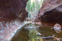 West Fork of Oak Creek Canyon in Red Rocks State Park Sedona Arizona. Red Rock Walls and Pools of Water at End of Hiking Trail in West Fork of Oak Creek Canyon Royalty Free Stock Photos