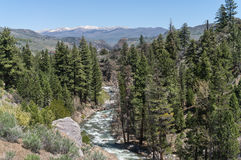 West fork of the Walker River, Sonora Pass Royalty Free Stock Image