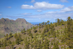 West Gran Canaria in February Royalty Free Stock Photos