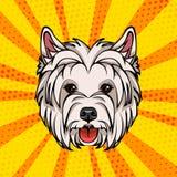 West Highland Terrier head. Dog portrait. Vector illustration. West Highland Terrier head. Dog portrait. Vector illustration isolated on colorful background Royalty Free Stock Photos