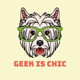 West Highland Terrier. Smart glasses. Dog geek. Vector. Geek in chic text vector illustration